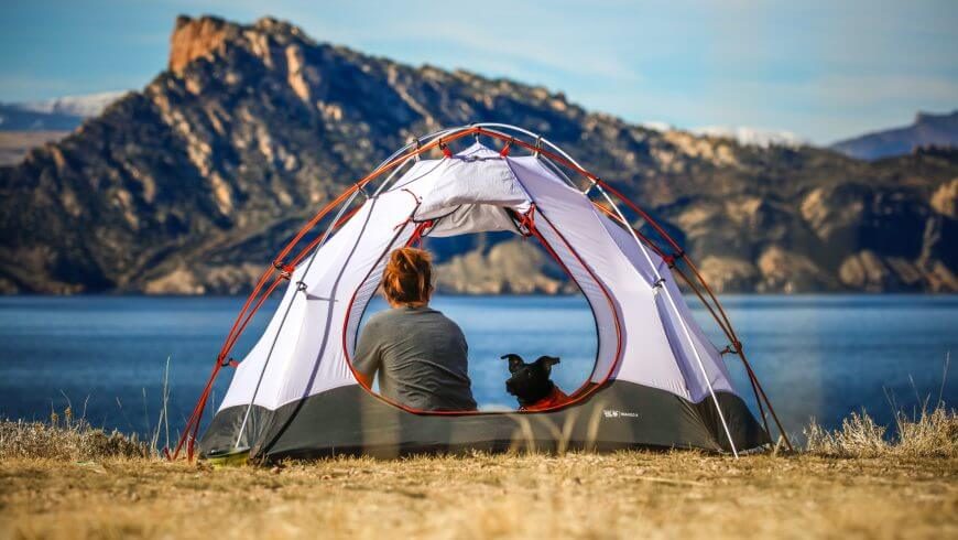 a girl camping with a dog